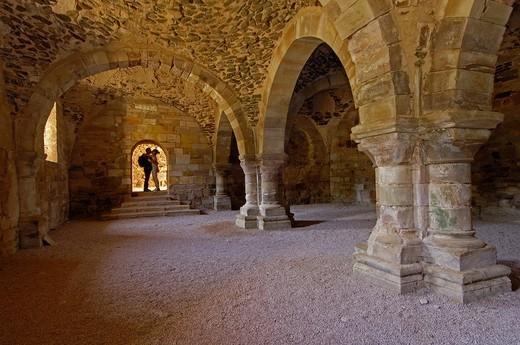 Stock Photo: 1566-945963 Ruins of Santa Maria de Moreruela Cistercian monastery (12th century), Granja de Moreruela, Zamora province, Castilla-Leon, Spain