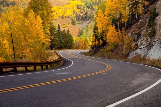 Fall colors in the San Juan Mountains of Colorado : Stock Photo