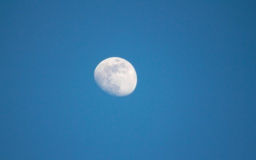 Moon : Stock Photo