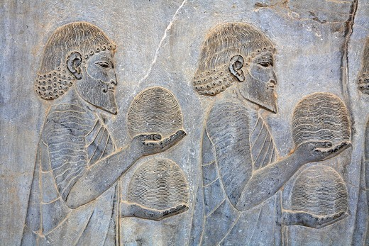 Bas reliefs showing envoys of the subject nations of Persia bringing gifts, Persepolis, Iran : Stock Photo