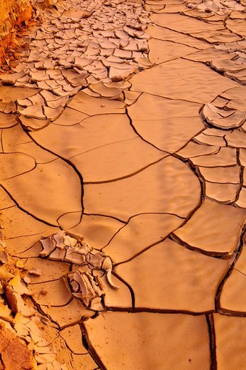 Paria Canyon, Utah : Stock Photo