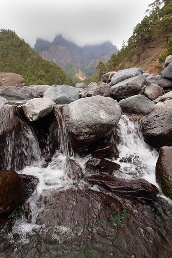 Taburiente River, Caldera de Taburiente National Park, Biosphere Reserve, ZEPA, LIC, La Palma, Canary Islands, Spain, Europe : Stock Photo