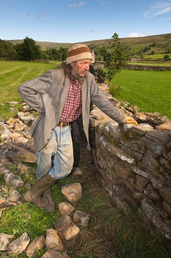 A local man repairs a dry stone wall at Muker in Swaledale in North Yorkshire , England , Britain , Uk : Stock Photo