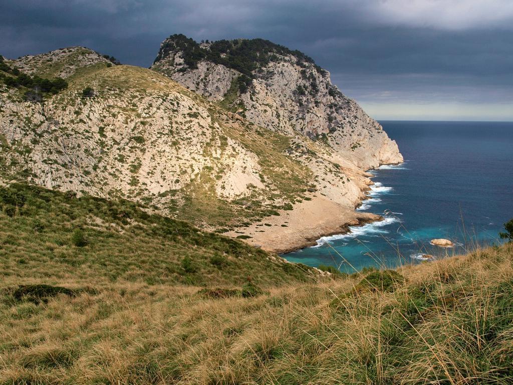 Figuera.Peninsula Cala Formentor, Pollença, Sierra de Tramuntana, Majorca, Balearic Islands, Spain : Stock Photo