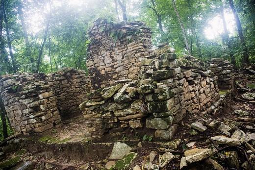The Río Usumacinta Valley, Piedras Negras Archaeological Site, Peten, Guatemala : Stock Photo
