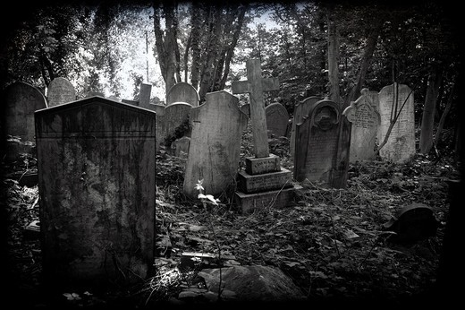 Stock Photo: 1566-965663 Abney Park Cemetery, Stoke Newington, Hackney, East End, London, England, UK
