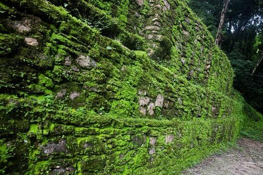 The Río Usumacinta Valley, Yaxchilán Archaeological Site, Chiapas, México : Stock Photo