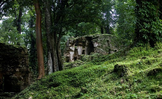 Stock Photo: 1566-966194 The Río Usumacinta Valley, Yaxchilán Archaeological Site, Chiapas, México