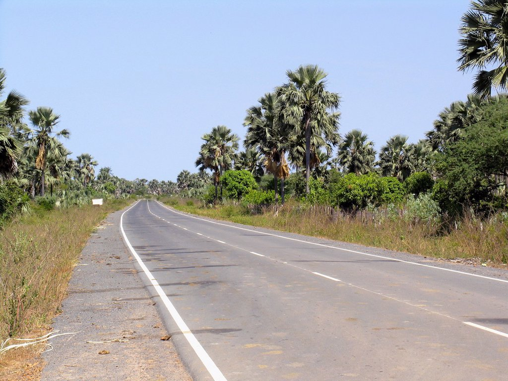 Main coast road north to capital Banjul from near Kartong in south of The Gambia : Stock Photo
