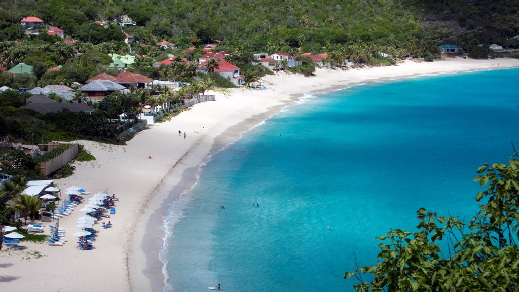Beach at Flamands St Barts : Stock Photo