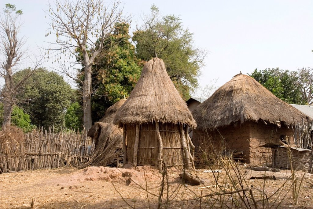 Stock Photo: 1566-969269 Traditional buildings and compound Batelling village near Tendaba Camp The Gambia