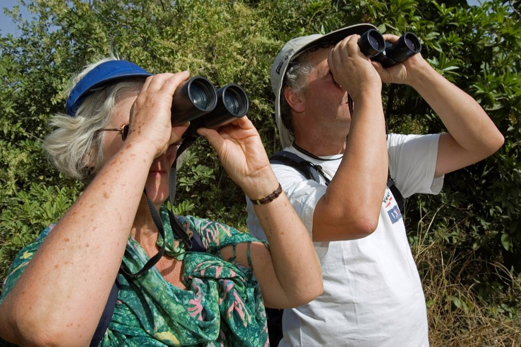 Bird watchers with binoculars spotting migratory and local species in bush south of The Gambia : Stock Photo