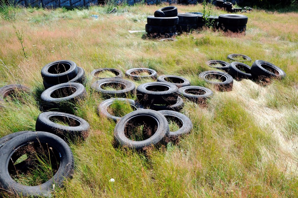 Old car tires on a green mead in Poland, Mazovia region : Stock Photo