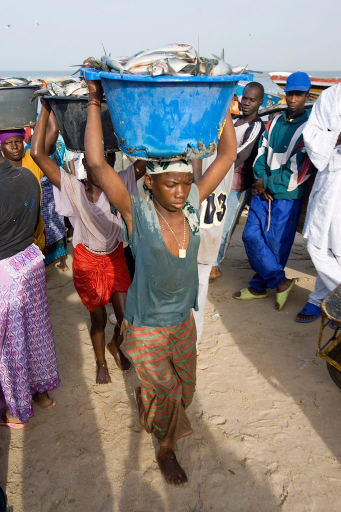 Stock Photo: 1566-974036 Young women carry basins of fresh fish on head up beach to market as open fishing boats arrive with catch Tanji The Gambia