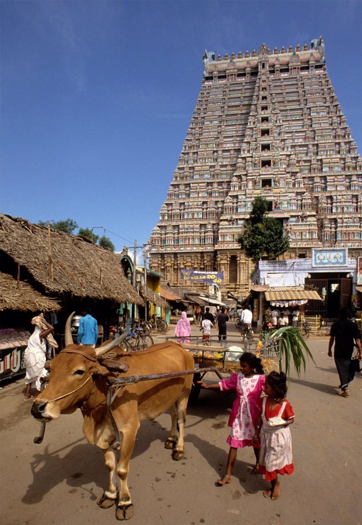 India Tiruchirappalli : Stock Photo