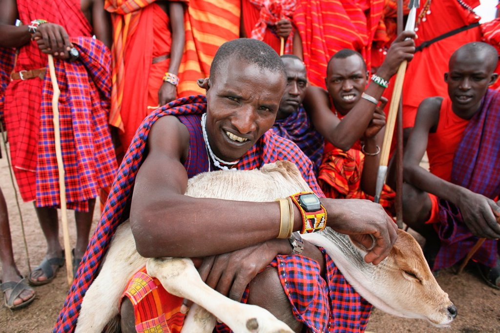 Stock Photo: 1566-975697 Ngoiroro is a village of 200 inhabitants, all belonging to the Massai Tribe The village lays right in the rift valley, south of Nairobi against the tanzanian border The Massai live very close to nature and their animals The cows and goats are more importa