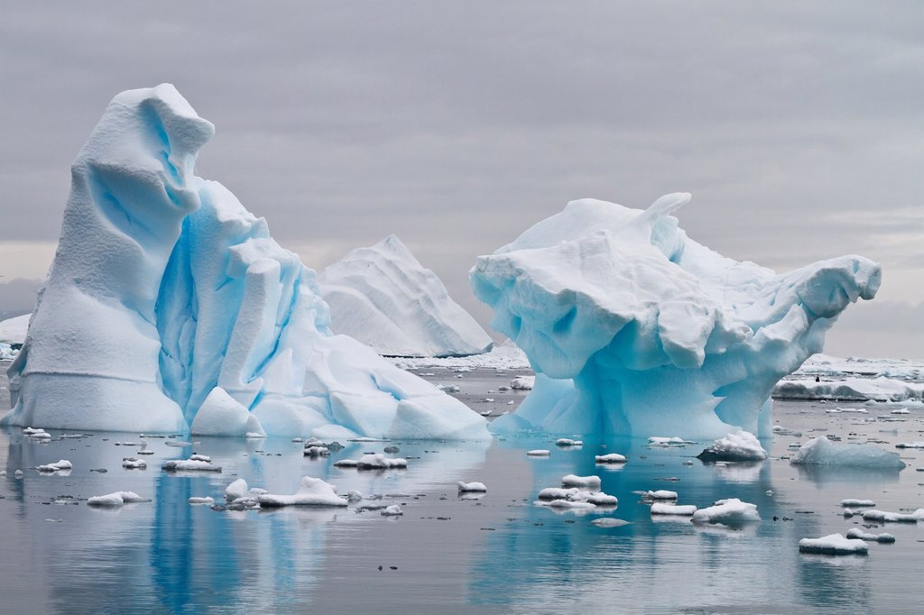 Stock Photo: 1566-977086 Icebergs near the Antarctic Peninsula during the summer months, Antarctica, Southern Ocean
