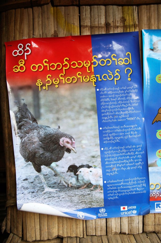 Stock Photo: 1566-977964 Poster promoting public health regarding livestock Around 130,000 Burmese refugees have settled in Thailand due to opression in their homeland of Myanmar Burma Approximately 30,000 refugees now live in Mae Sot western Thailand and receive humanitarian aid
