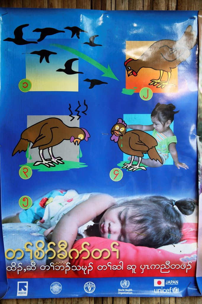 Poster on public health issues involving bird flu, a disease infectious to humans Around 130,000 Burmese refugees have settled in Thailand due to opression in their homeland of Myanmar Burma Approximately 30,000 refugees now live in Mae Sot western Thaila : Stock Photo