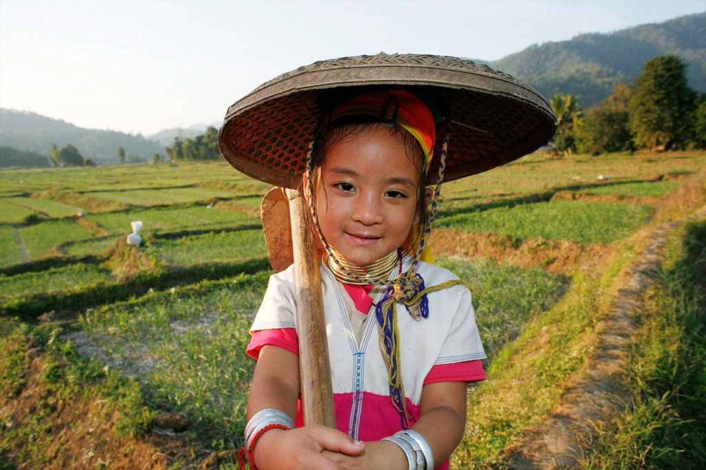 A young Longneck girl in the rice fields Approximately 300 Burmese refugees in Thailand are members of the indigenous group known as the Longnecks The largest of the three villages where the Longnecks live is called Nai Soi, located near Mae Hong Son City : Stock Photo
