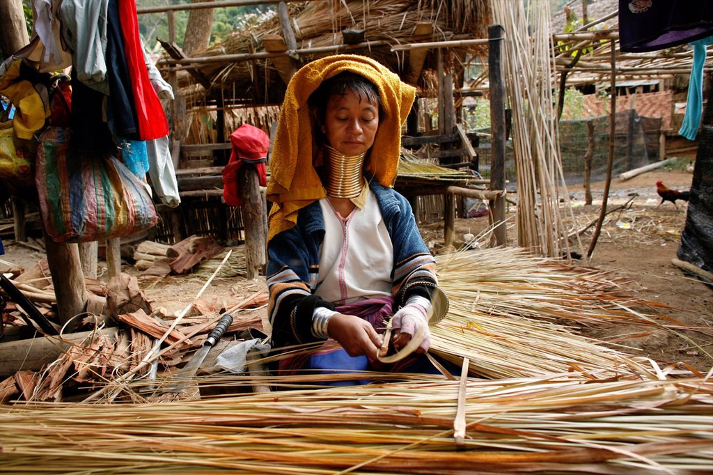 Stock Photo: 1566-979995 A Longneck woman prepares reeds for weaving or thatch Approximately 300 Burmese refugees in Thailand are members of the indigenous group known as the Longnecks The largest of the three villages where the Longnecks live is called Nai Soi, located near Mae