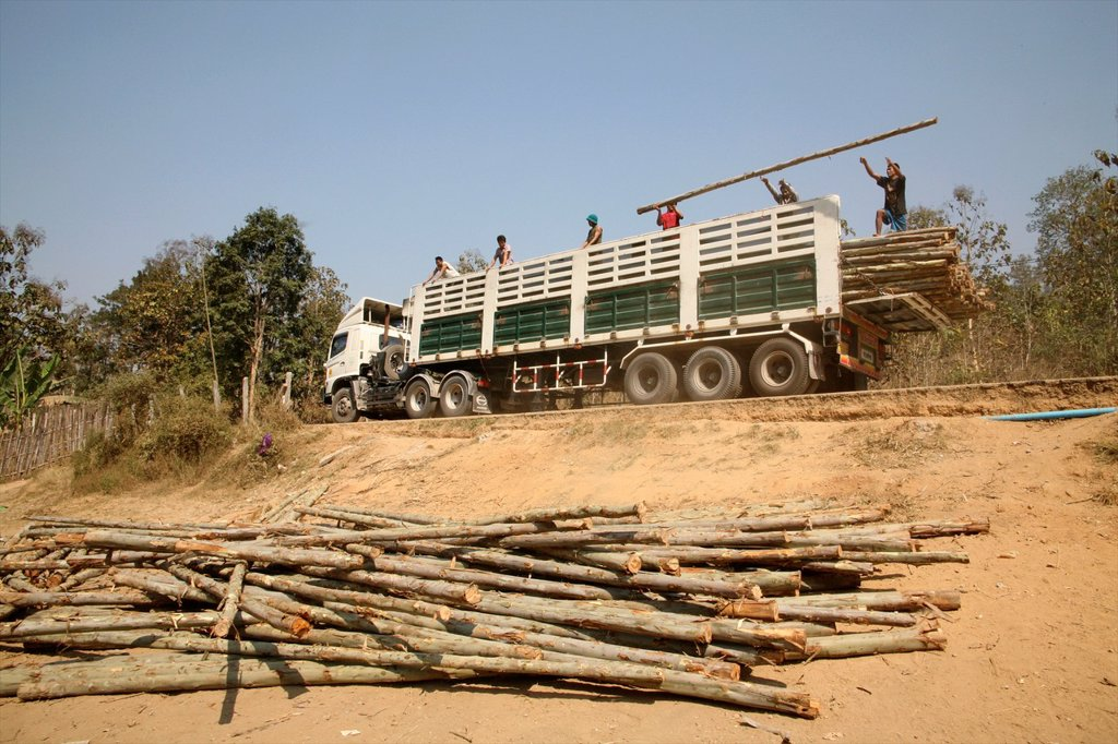 Stock Photo: 1566-980070 Workers unload logs from a truck to build more homes Around 130,000 Burmese refugees have settled in Thailand due to opression in their homeland of Myanmar Burma Approximately 30,000 refugees now live in Mae Sot western Thailand and receive humanitarian a