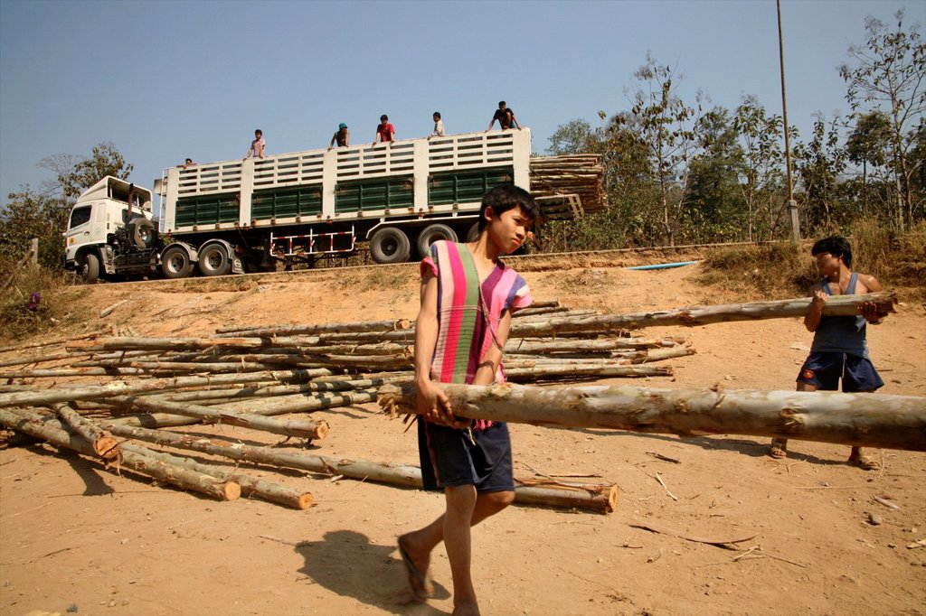 Stock Photo: 1566-980071 Men and boys carry logs to build more homes Around 130,000 Burmese refugees have settled in Thailand due to opression in their homeland of Myanmar Burma Approximately 30,000 refugees now live in Mae Sot western Thailand and receive humanitarian aid Anothe
