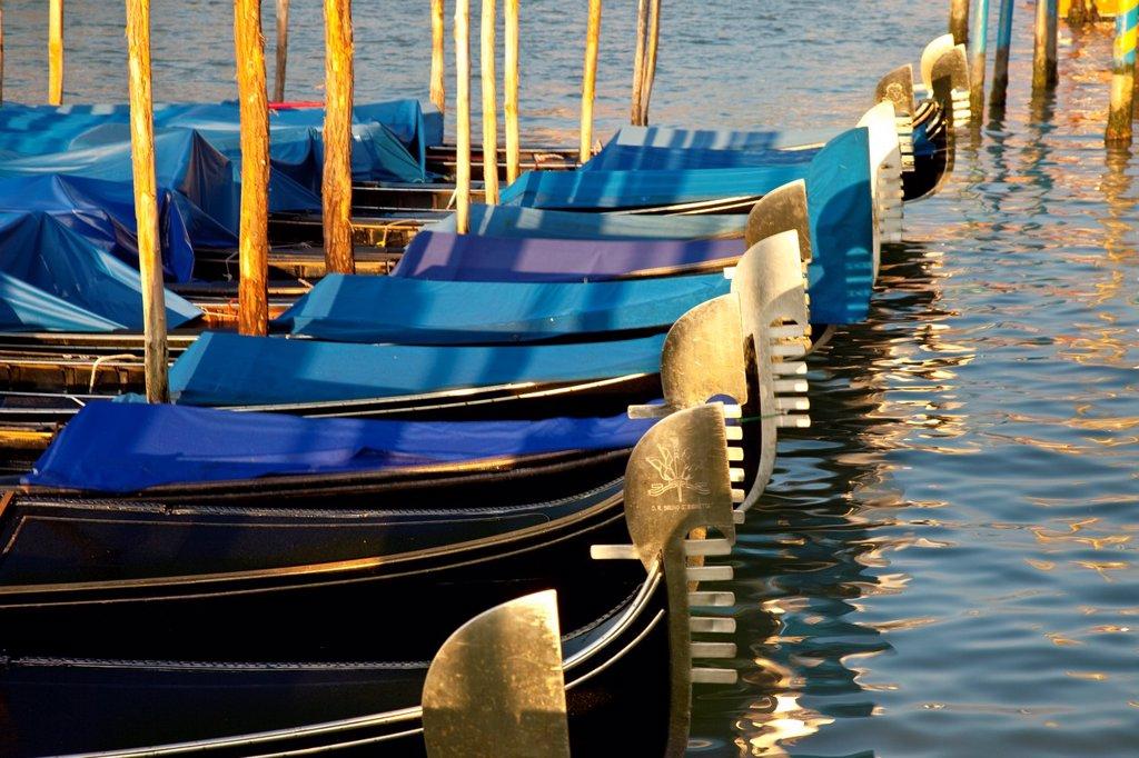 Stock Photo: 1566-981748 Gondolas lined up - early morning on the Grand Canal, Venice Veneto Italy