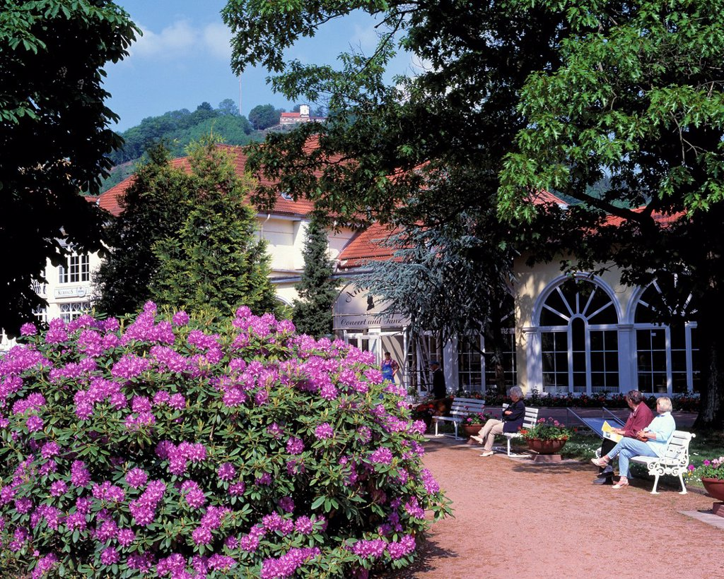 Stock Photo: 1566-983513 D-Bad Lauterberg im Harz, Oder, Oder valley, Lutter, Lutter valley, Harz, nature reserve Harz, Lower Saxony, spa gardens, kurhaus, people sitting on benches, spa guests, rhododendron bush, rhododendron flowering