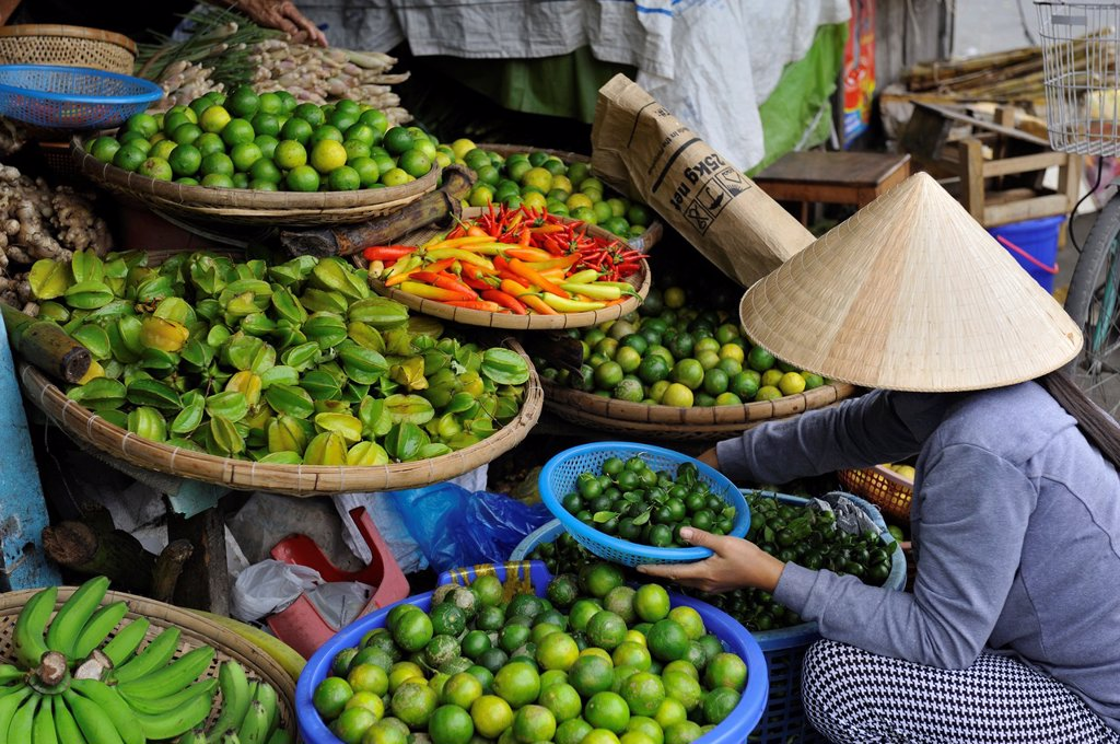 Stock Photo: 1566-983624 Vietnam, Mekong delta, Can Tho, woman at the market