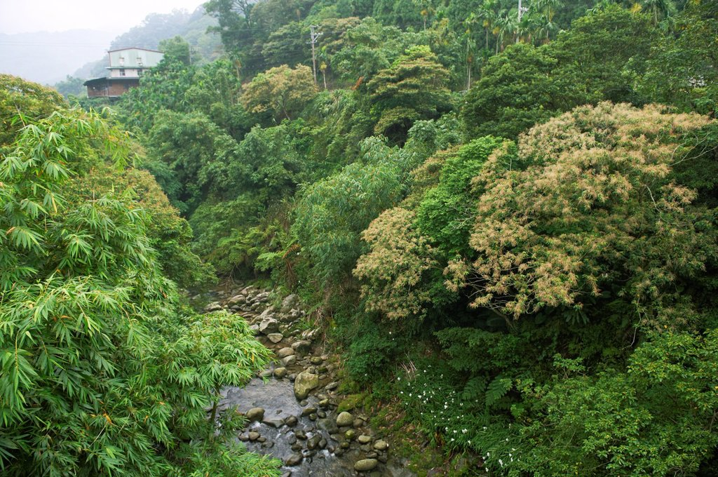 A stoney creek in Taiwan´s countryside : Stock Photo