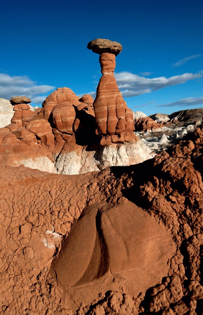 Stock Photo: 1566-986223 Escalante National Monument Scene