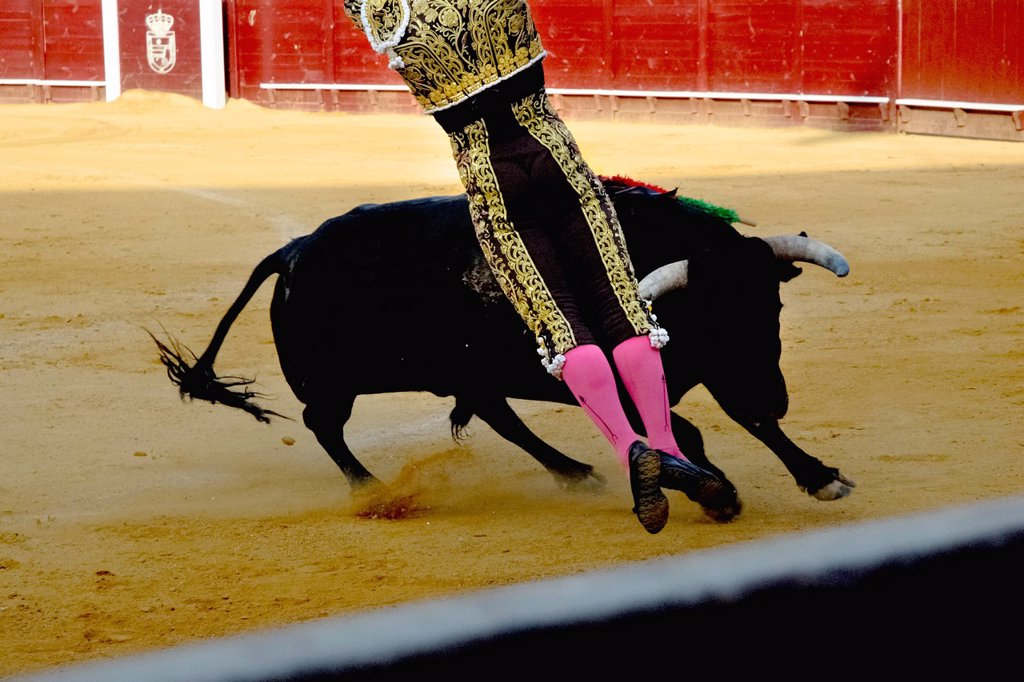 Stock Photo: 1566-990213 A Spanish bullfighter matador performs at the bullring in Torremolinos, Spain, 28 July 2006