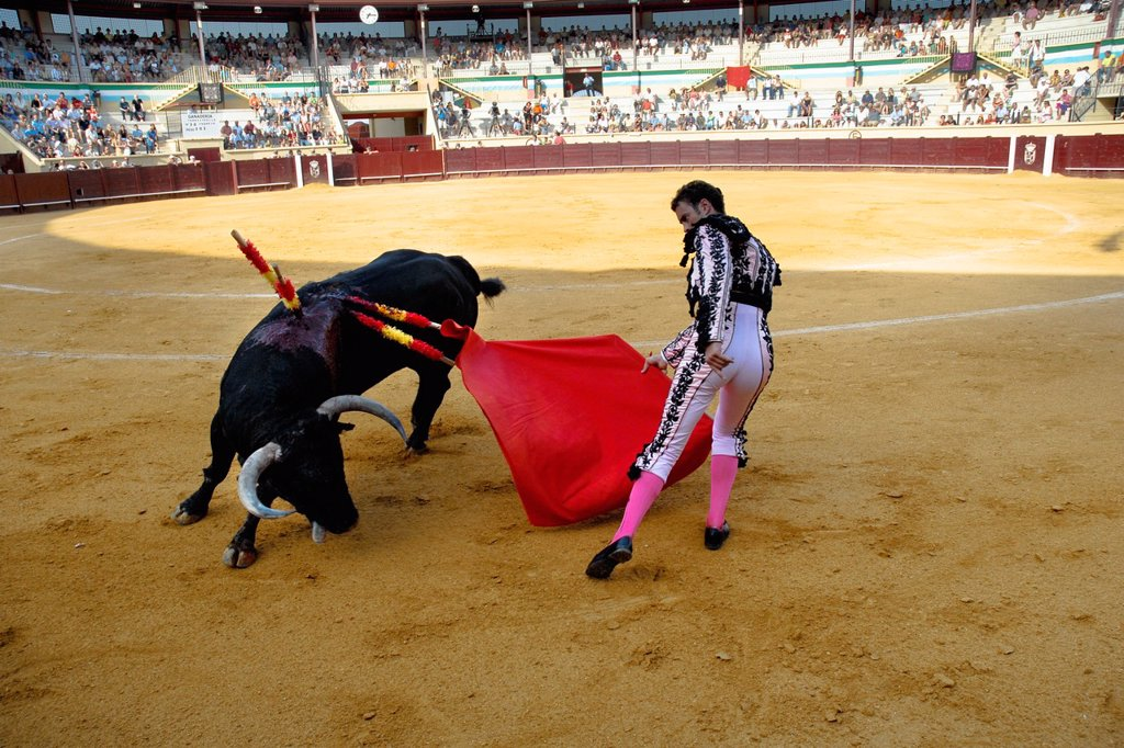 Stock Photo: 1566-990214 A Spanish bullfighter matador performs at the bullring in Torremolinos, Spain, 28 July 2006