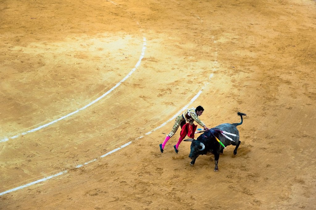 Stock Photo: 1566-990220 A Spanish bullfighter matador kills a bull with the sword at the bullring in Granada, Spain, 7 June 2006
