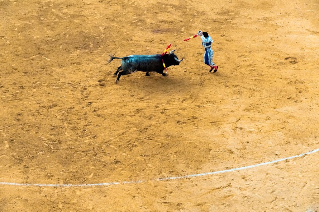 Stock Photo: 1566-990221 A Spanish bullfighter banderillero performs at the bullring in Granada, Spain, 7 June 2006