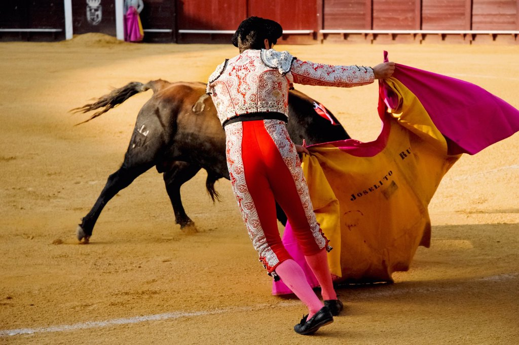 A Spanish bullfighter performs at the bullring in Torremolinos, Spain, 24 July 2006 : Stock Photo