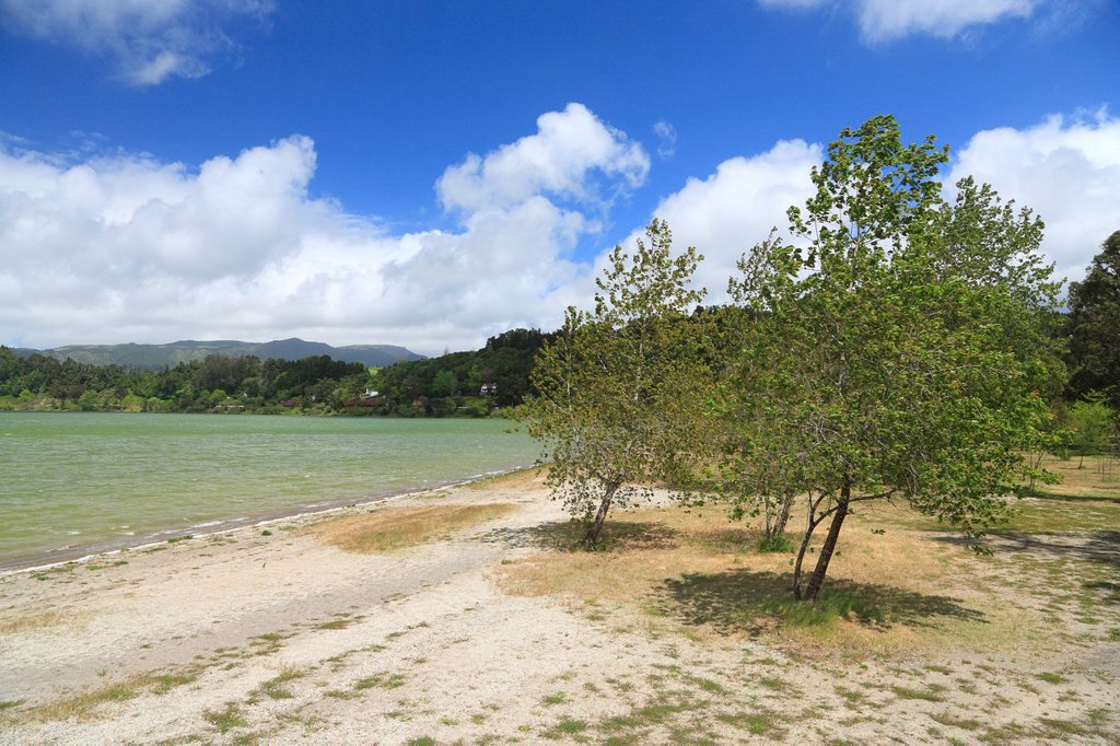 Stock Photo: 1566-991296 Trees on the shore of Furnas lake  Sao Miguel island, Azores islands
