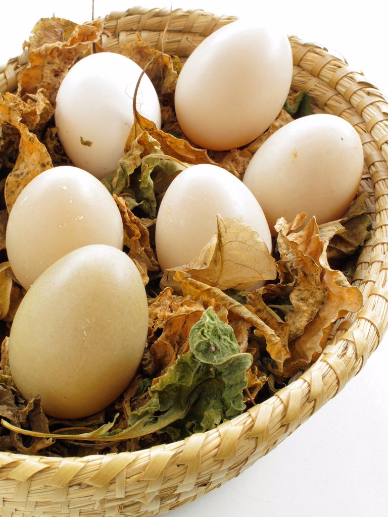 Stock Photo: 1566-992008 Egg basket