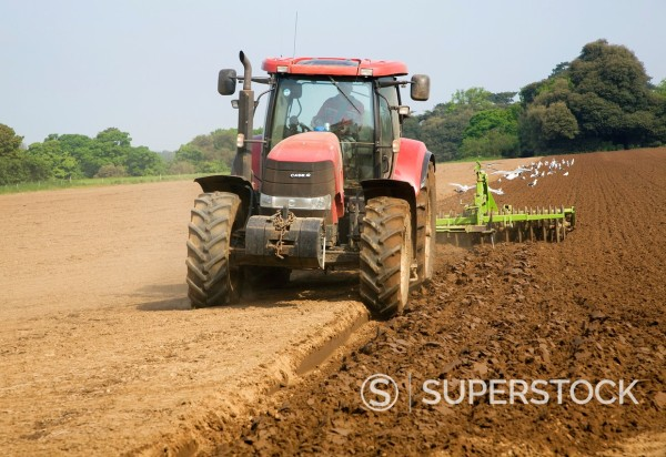 Red tractor ploughing field Shottisham, Suffolk, England : Stock Photo