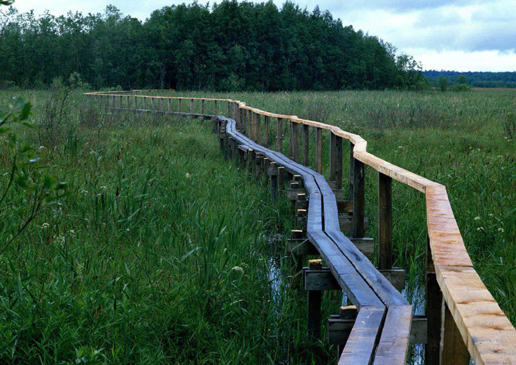 Stock Photo: 1569R-15042 Finland, bridge through marshlands