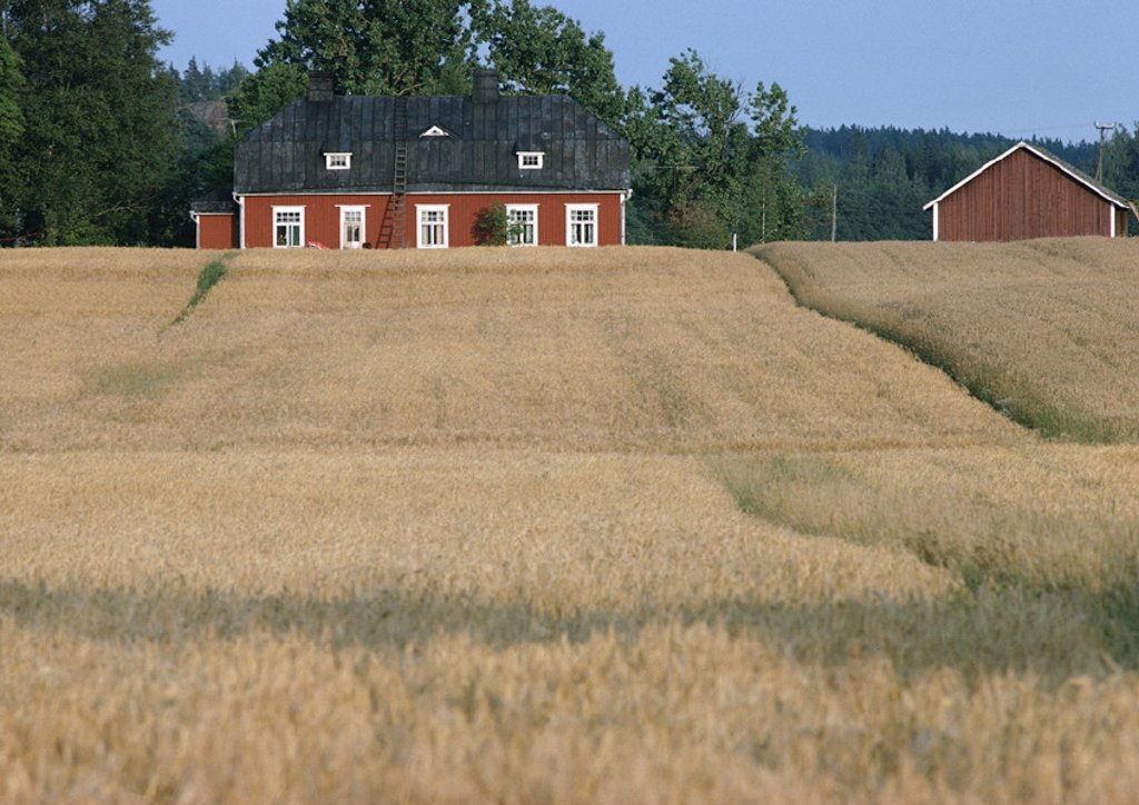 Finland, rural buildings on edge of field : Stock Photo