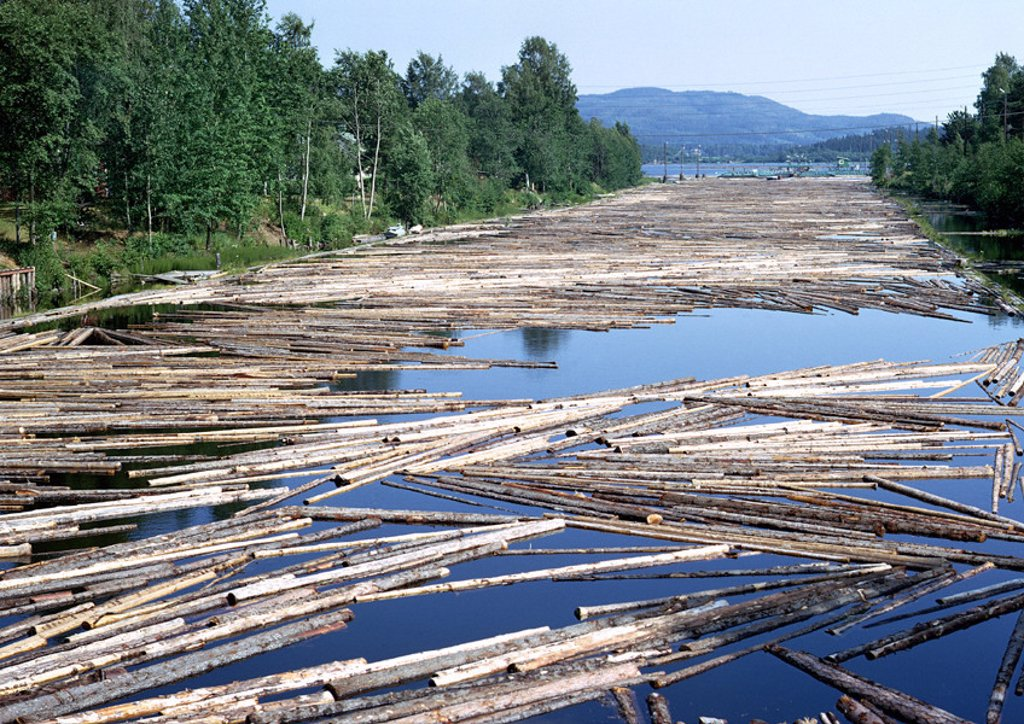 Finland, timber floating in river with trees on edge of river and mountain in background : Stock Photo