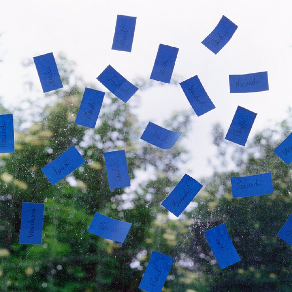 Stock Photo: 1569R-208023 Blue adhesive notes on pane of glass