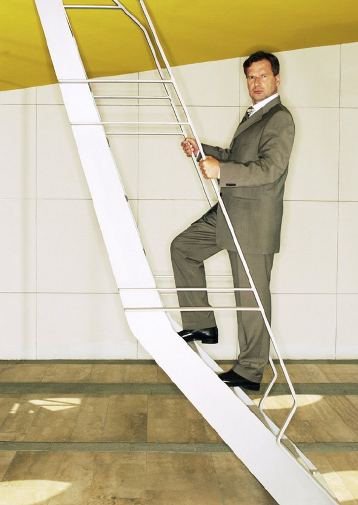 Man standing on ladder, looking into camera : Stock Photo