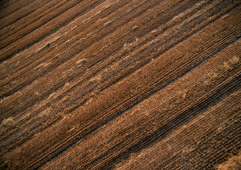 France, Lorraine, plowed field, aerial view : Stock Photo