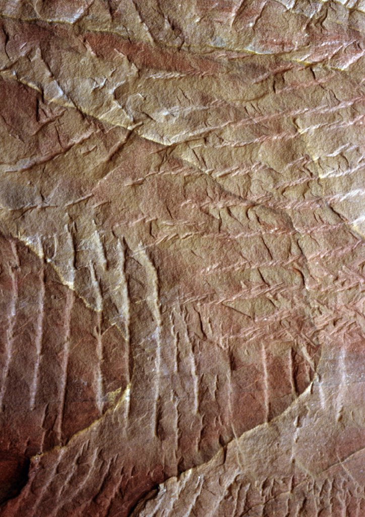 Textured surface : Stock Photo