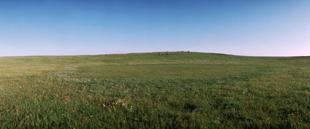 Mongolia, plain, panoramic view : Stock Photo