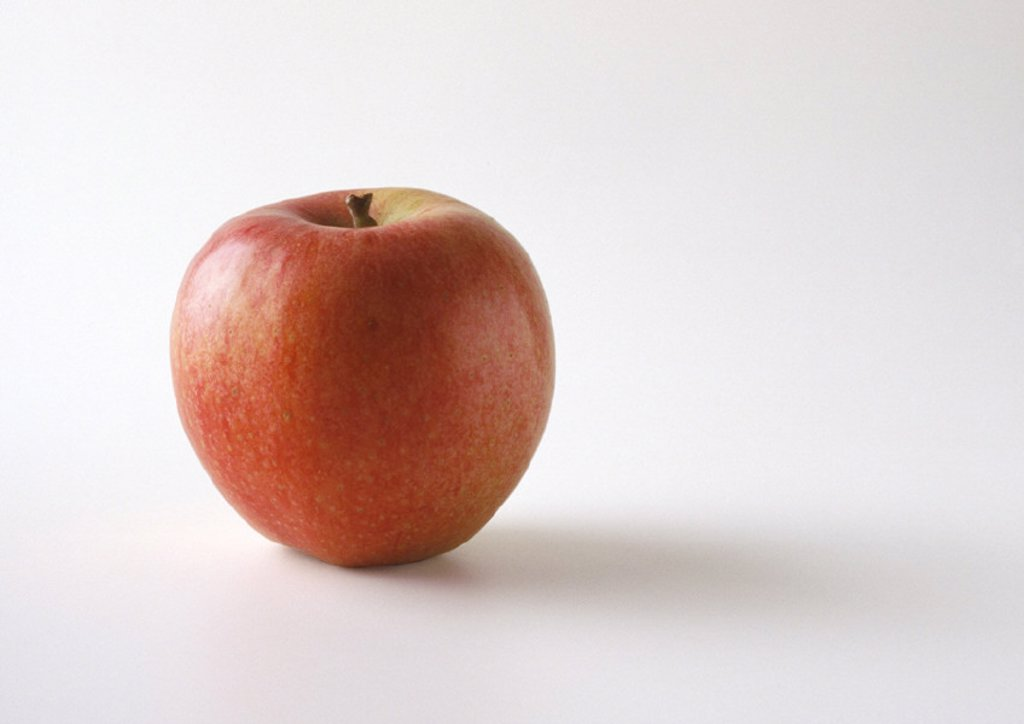 Stock Photo: 1569R-38054 Red apple in upright position, white background