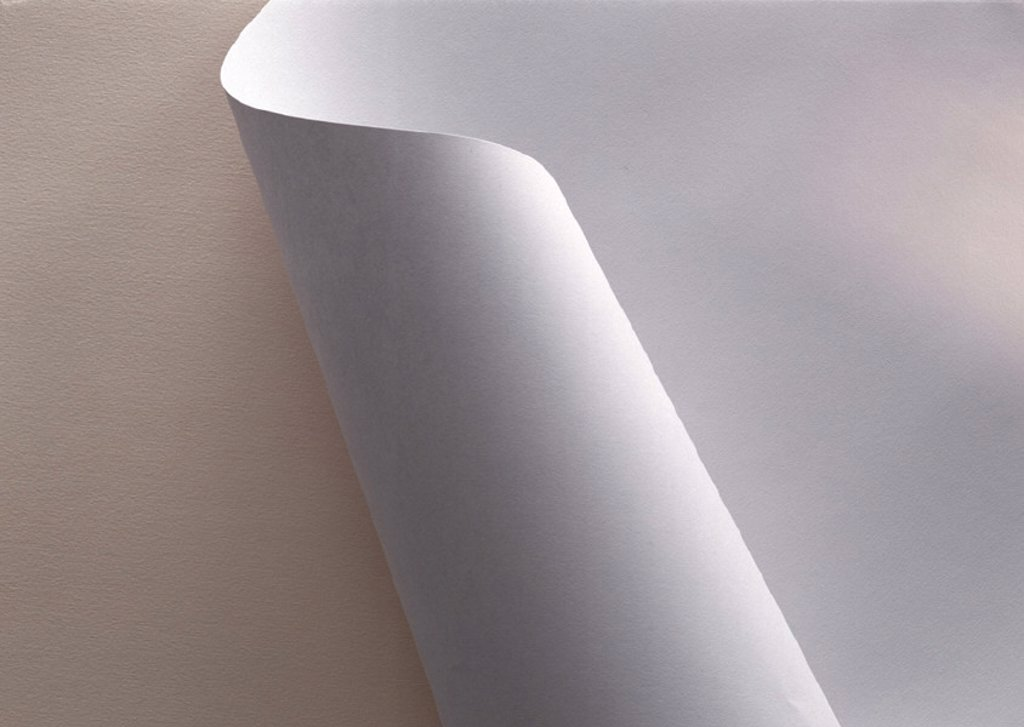 White paper, partially rolled up, extreme close-up : Stock Photo